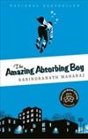 Amazingabsorbingboy