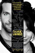 Silver Linings Playbook film