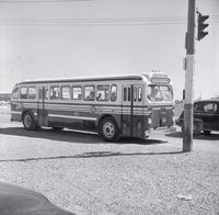 T.T.C. bus #1904 on Keele St. at Wilson Ave., 1955