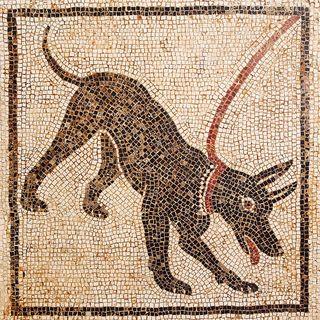 Mosaic of watchdog