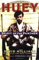 Huey spirit of the Panther