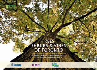 Trees Shrubs & Vines of Toronto