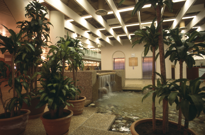 Toronto Reference Library At 40 Raymond Moriyama And The