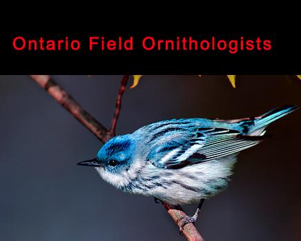 Ontario Field Ornithologists