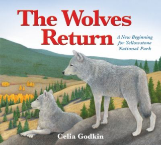 17.The wolves return - a new beginning for Yellowstone National Park. Godkin  Celia. 2017