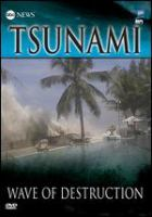 Tsunami wave of destruction