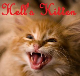Hells kitten 1