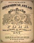 1878york-title