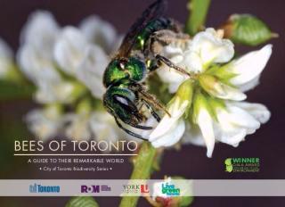 Bees of Toronto