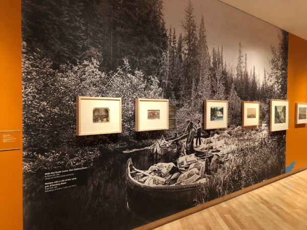 Pathways exhibit