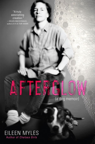 Afterglow--a Dog Memoir