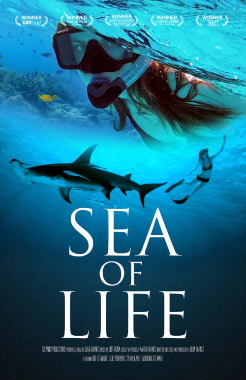 Sailfish and school of fishes from Sea of Life Documentary