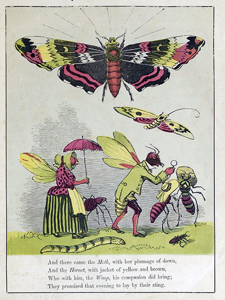 The Butterfly's Ball 1874