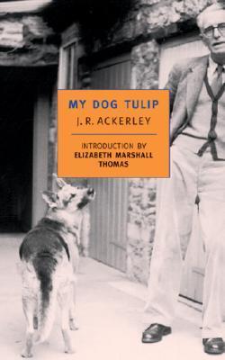 My Dog Tulip book by J.R Ackerley