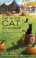 Black cat sees his shadow