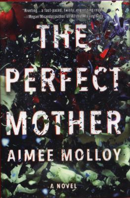 Perfect Mother