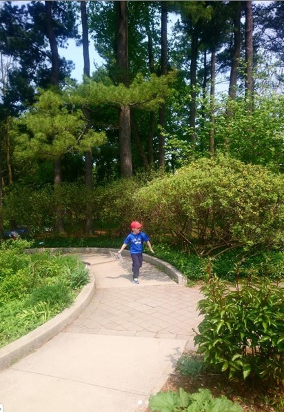 Boy running through a path at the Toronto Botanical Garden's Teaching Garden