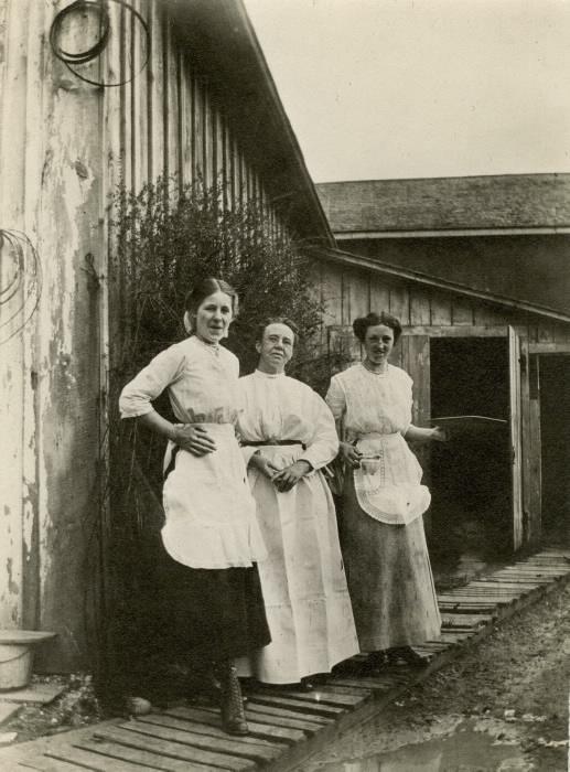 1900 Empringham Hotel (1890s-1913)  Danforth Ave.  s.w. corner Dawes Rd. waitresses & cook