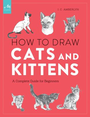 How to draw cats and kittens  a complete guide for beginners