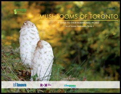 Biodiversity - Mushrooms of Toronto