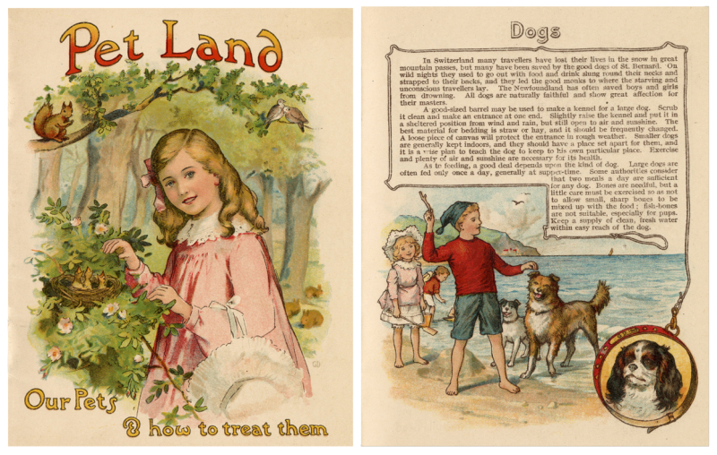 Book cover of an illustrated girl in nature and a different page of book titled Dogs with a large portio of text and illustration of children playing with dogs