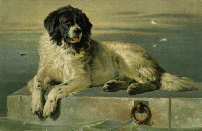 Illustration of large dog on a pier