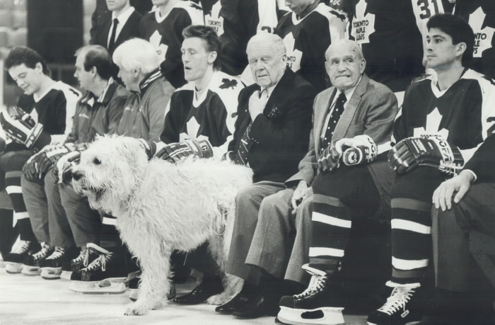 Maple Leafs hockey players sitting with a large dog
