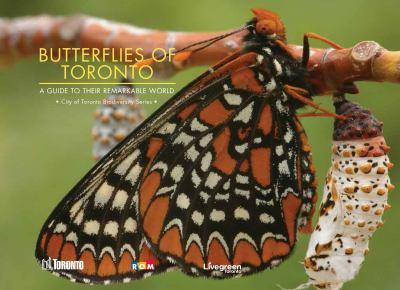 Biodiversity - Butterflies of Toronto