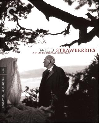 Tpl Wild Strawberries