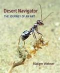 Desert navigator the journey of an ant