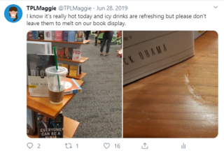 Maggieinthelibrary2