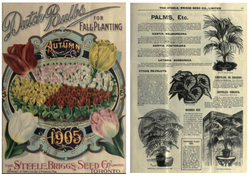 Two side by side images, one showing cover with garden illustrations and the other showing black and white illustrations of plants and items for sale