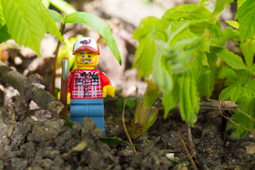 Farmer LEGO person in the fields