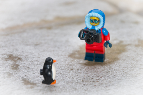 LEGO person wearing a parka and photograping a penguin on ice