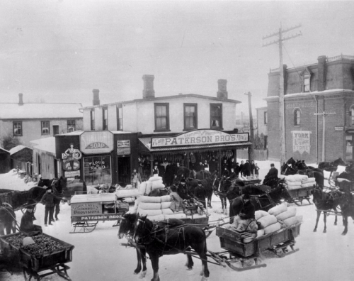 A black and white photograph of a busy seen of horse drawn sleighs carrying goods to and from a shop in winter