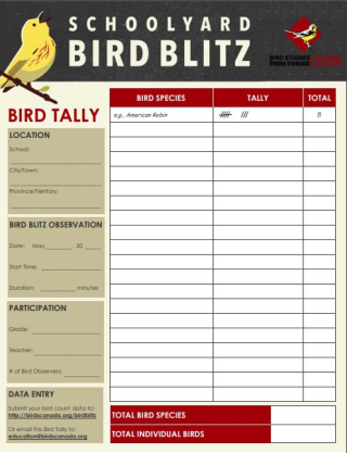 Schoolyard Bird Blitz tally sheet