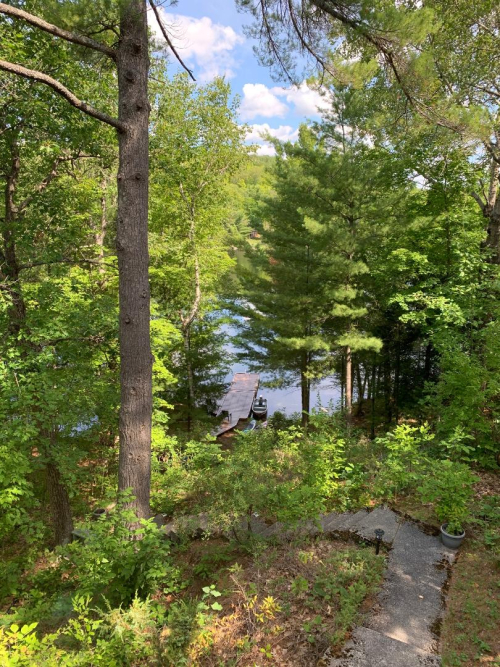 Cottage view at Stoney Lake