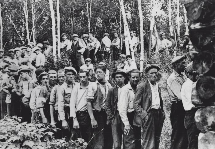 Line of working men on tree laden path