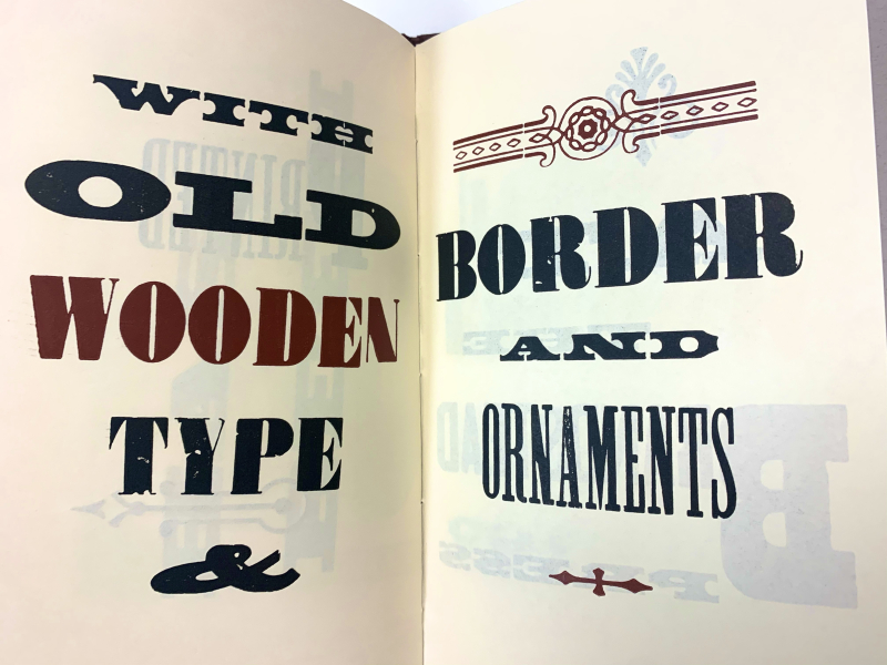 """Inner page of """"This Book"""" by Brandstead Press displaying various fonts"""