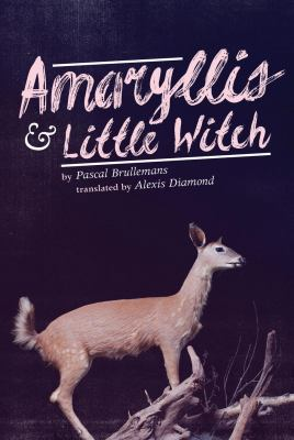 Amaryllis and little witch