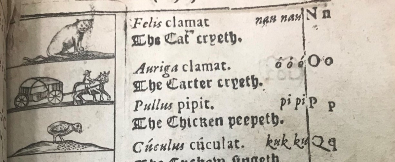 """Page from Orbis Sensualium Pictus with English text reading """"The Cat cryeth,"""" """"The Carter cryeth"""" and """"The Chicken peepeth."""""""