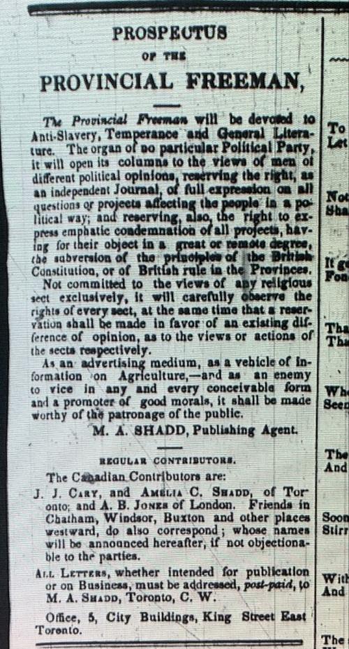 Prospectus of the Provincial Freeman