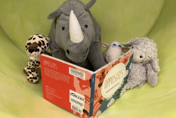 Stuffies reading