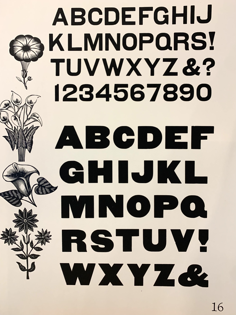 Wood type specimen of a sans serif upper case alphabet with floral ornaments